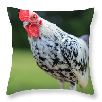 The Speckled Chicken Throw Pillow