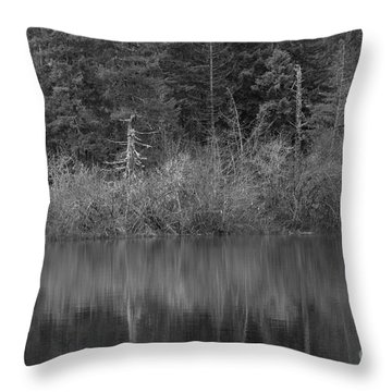 The Spike Throw Pillow