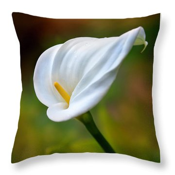 The Spirit Of Ecstasy Throw Pillow