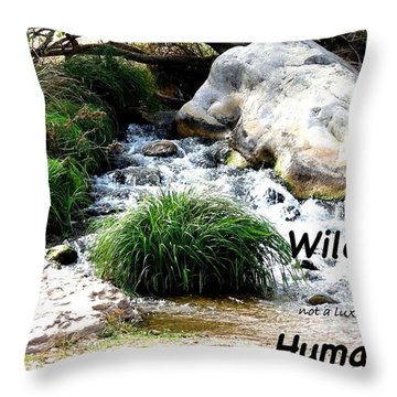 The Spirit Of Water Throw Pillow
