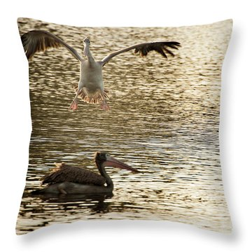 The Spot-billed Pelican Or Grey Pelican  Pelecanus Philippensis  Throw Pillow