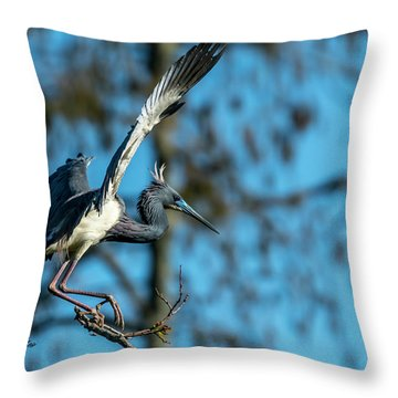 The Stage Entry Throw Pillow