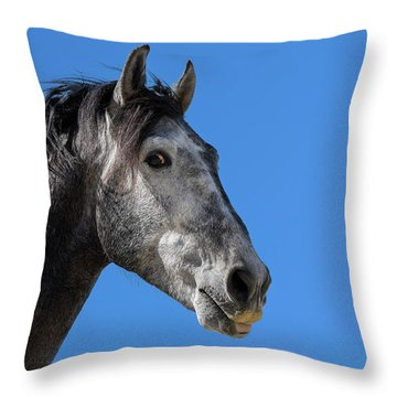 The Stallion Throw Pillow