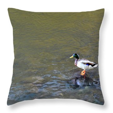 The Standing Duck Throw Pillow