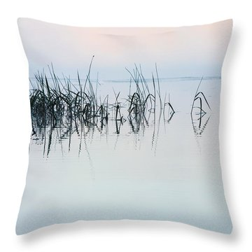 The Stillness Of Life Throw Pillow by Shelby  Young