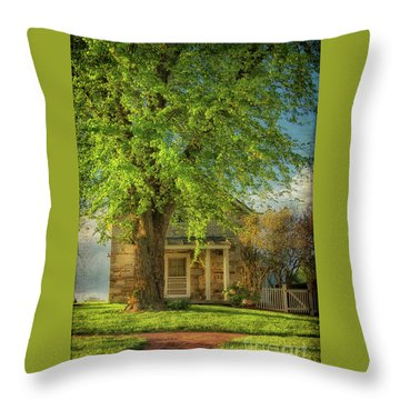 Throw Pillow featuring the photograph The Stone Cottage On A Spring Evening by Lois Bryan