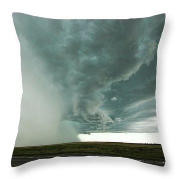 The Stoneham Shelf Throw Pillow