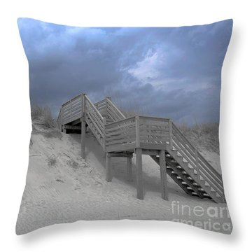 The Storm Is Here Throw Pillow by Linda Mesibov