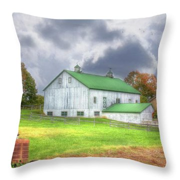 The Storms Coming Throw Pillow by Sharon Batdorf