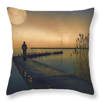 The Stranger Throw Pillow by Brian Tarr