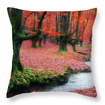 The Stream Of Life Throw Pillow