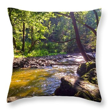 The Stream Throw Pillow by Shawn Dall
