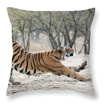 The Stretch Throw Pillow by Pravine Chester