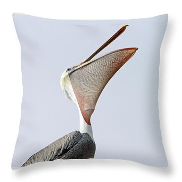The Stretch  Throw Pillow by Shoal Hollingsworth