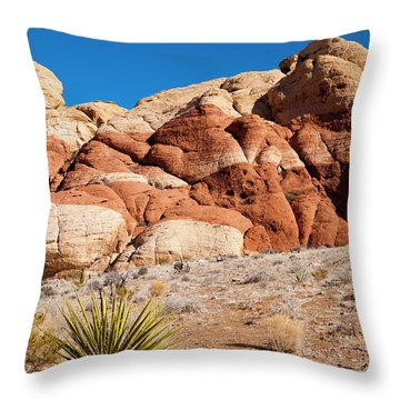 The Striped Rock Throw Pillow by Rae Tucker