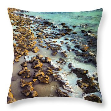 Throw Pillow featuring the photograph The Stromatolite Family Enjoying Its 1277500000000th Sunset by T Brian Jones