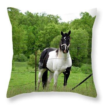 The Strong Horse Throw Pillow