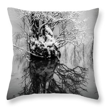 The Stump Throw Pillow