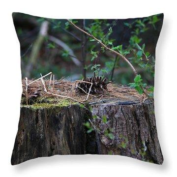 The Stump Throw Pillow