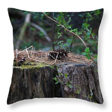 Throw Pillow featuring the photograph The Stump by Rick Morgan