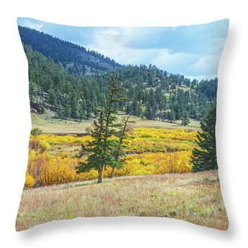 The Sublime Beauty That Ensorcells The Soul.  Throw Pillow by Bijan Pirnia