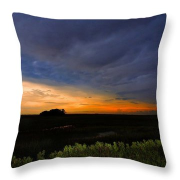 Throw Pillow featuring the photograph The Summer Show by Laura Ragland