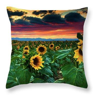 The Summer Winds Throw Pillow by John De Bord
