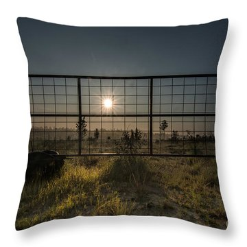 The Sun Is Free Throw Pillow