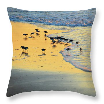 The Sun Is Shining And So Are You Throw Pillow