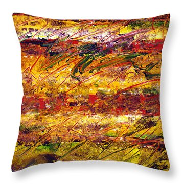 The Sun Rose One Step At A Time Throw Pillow by Wayne Potrafka