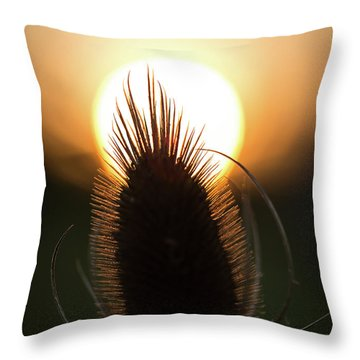 Throw Pillow featuring the photograph The Sun Sets Upon Summer by Dale Kincaid