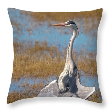 The Sunbather Throw Pillow