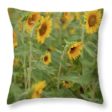 The Sunflower Patch Throw Pillow