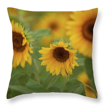 The Sunflowers In The Field Throw Pillow