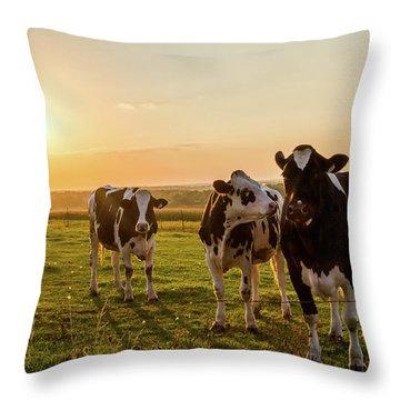 The Sunset Graze Throw Pillow