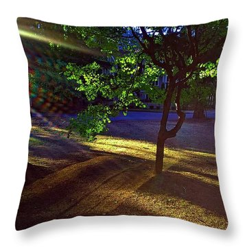The Sunset Grove  Throw Pillow