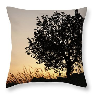 Sunset On The Hill Throw Pillow by Yoel Koskas