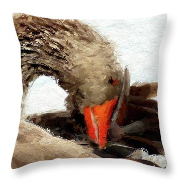 Cygnet Throw Pillows