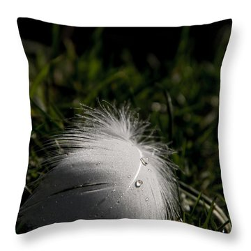 The Swans Are Back Throw Pillow by Odd Jeppesen