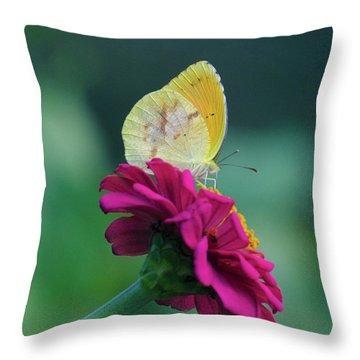 The Sweet Spot Throw Pillow