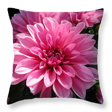 The Sweetest Throw Pillow