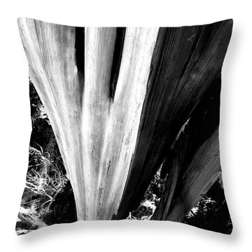 Throw Pillow featuring the photograph The Swoop Of Fallen Wood by Lorraine Devon Wilke