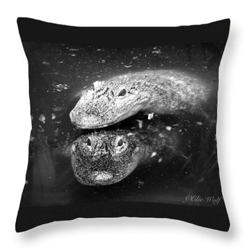 The Tao Of Dragons Throw Pillow