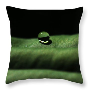 The Tao Of Raindrop Throw Pillow