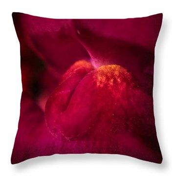The Taste Throw Pillow