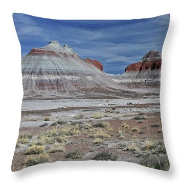 the TeePees Throw Pillow by Gary Kaylor