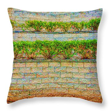 The Terraced Wall Throw Pillow