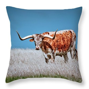Throw Pillow featuring the photograph The Texas Longhorn by Linda Unger