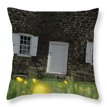 Throw Pillow featuring the photograph The Thompson-neely House In Washington Crossing State Park by Emanuel Tanjala