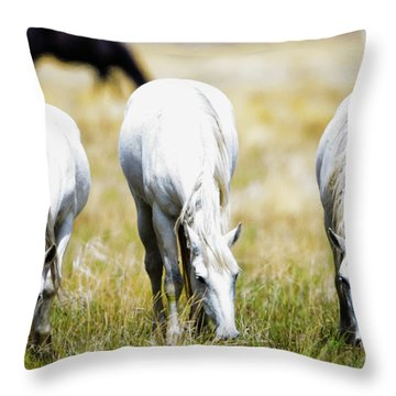 The Three Amigos Grazing Throw Pillow